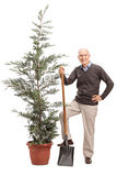 Senior man holding shovel and posing by a tree Stock Image