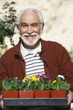 Senior Man Holding Tray With Flowerpots Stock Photos