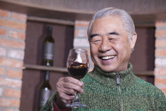 Senior Man Holding Wineglass, Portrait Royalty Free Stock Photography