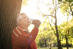 Senior man leaning on tree in park and drinking coffee a royalty free stock photography