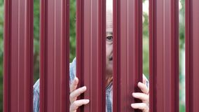 Senior man looking through fence spying on his neighbor. Curious pensioner want to see what is going on outdoor stock video footage