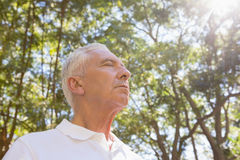 Senior man meditating in the forest Stock Photo