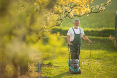 Senior man mowing the lawn in his garden. Selective focus; shallow DOF Royalty Free Stock Photo