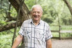 Senior man in the nice forest park royalty free stock photo