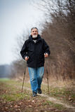 Senior man nordic walking Royalty Free Stock Photos