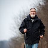 Senior man nordic walking Stock Photo