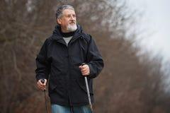 Senior man nordic walking, Stock Photos