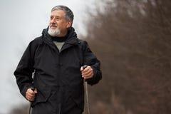 Senior man nordic walking, Royalty Free Stock Photos