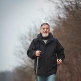 Senior man nordic walking, Stock Photo