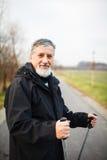 Senior man nordic walking Stock Photography