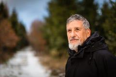 Senior man nordic walking, enjoying the outdoors Stock Image