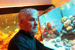 Senior man at oceanarium Stock Images