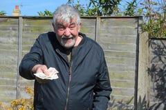 Senior man offering money. Stock Photo