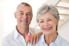 Senior man offering a rose to his partner smiling at camera Stock Photos