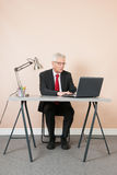 Senior man at the office Stock Photos