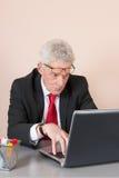 Senior man at the office Stock Image