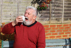 Senior man outside sneezing. Cold. Allergy. Hay fever. Royalty Free Stock Photography