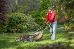 Senior man owing grass Stock Images