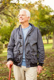 Senior man in the park Royalty Free Stock Photo