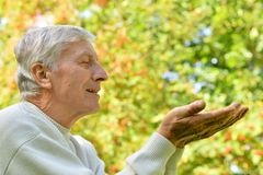 Senior man in park shows his hands Stock Image