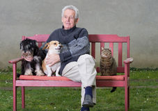 Senior man with pets Stock Image