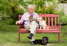 Senior man with pets Royalty Free Stock Image
