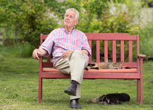 Senior man with pets stock photo