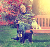 Senior man with pets Royalty Free Stock Images