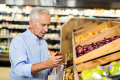 Senior man picking out onions Stock Images
