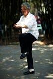 Senior man play taiji boxing Royalty Free Stock Photos