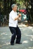 Senior man play taiji boxing Royalty Free Stock Images