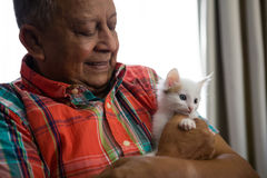 Senior man playing with kitten at nursing home. Happy senior man playing with kitten at nursing home stock photos