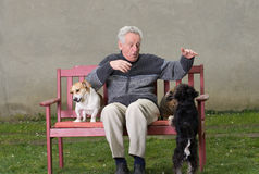 Senior man plays with pets Royalty Free Stock Image