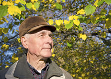 The senior man portrait Stock Photography