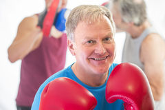 Senior man posing with boxing gloves. Senior men posing posing in a fighting stance with boxing gloves Royalty Free Stock Images