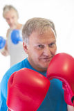 Senior man posing in boxing stance. Senior man posing in a boxing stance wearing gloves Royalty Free Stock Images