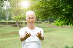 Senior man practicing qigong in the park Royalty Free Stock Photos