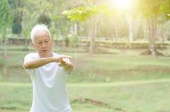 Senior man practicing tai chi outdoor Royalty Free Stock Images