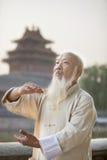 Senior Man Practicing Tai Ji Stock Photo