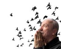 Senior man praying. Against the sky wirh flying doves stock image