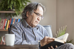 Senior man reading book. Senior man portrait reading book Royalty Free Stock Photography