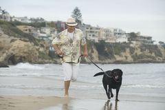 Senior Man Running With Dog At Beach Stock Photos