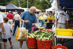 Senior Man Selects Corn Farmer's Market Virginia. A senior man selects corn from a basket of corn on the cob at a Farmer's Market in Virginia Royalty Free Stock Photography