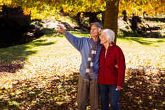 Senior man showing something to his wife Stock Image