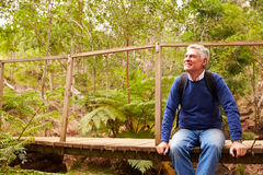 Senior man sitting alone on a wooden bridge in a forest. Senior men sitting alone on a wooden bridge in a forest royalty free stock photos