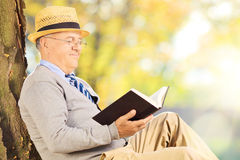 Senior man sitting on a grass and reading a book in park Stock Images