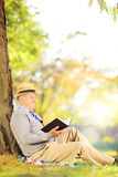 Senior man sitting on a grass and reading a book in park Royalty Free Stock Images