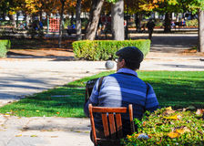 Senior man sitting and playing the accordion in a park. Senior man seen backwards, wearing a beret and playing the accordion while sitting in a park Royalty Free Stock Image