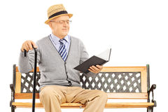 Senior man sitting on a wooden bench and reading a book Royalty Free Stock Image