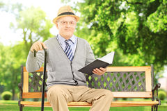 Senior man sitting on a wooden bench and reading a book, in park Stock Image